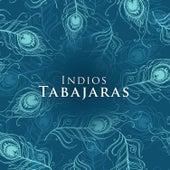 Indios Tabajaras by Los Indios Tabajaras