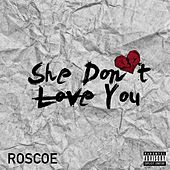 She Don't Love You by Roscoe