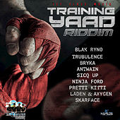 Training Yaad Riddim by Various Artists
