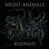 Resonate by Night Animals