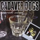 Pariah Social by Cadaver Dogs