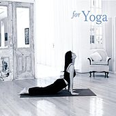 for Yoga by Various Artists