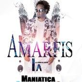 La Maniatica by AMARFIS Y LA BANDA DE ATAKKE