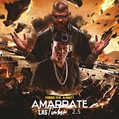 Amarrate las Timber (2.5) [feat. Almighty] by Farruko