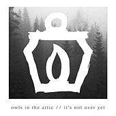 It's Not over Yet by Owls In the Attic