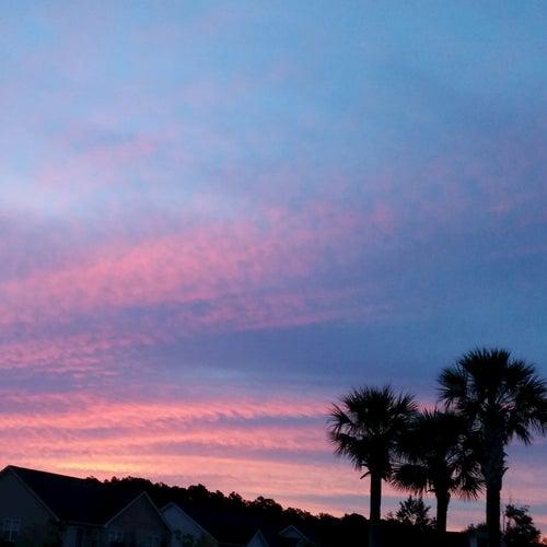 Daylight by John Owens Journal