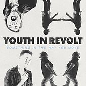 Something In The Way You Move by Youth in Revolt