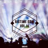 Bigtime EDM, Vol. 14 by Various Artists