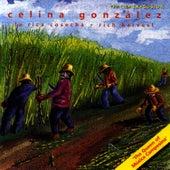 Rich Harvest by Celina Gonzalez