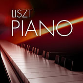 Liszt Piano by Various Artists