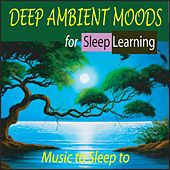 Deep Ambient Moods for Sleep Learning: Music to Sleep To by Steven Current