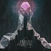 Optimism (pkacarl Remix) by Anima