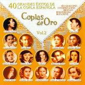 Coplas de Oro, Vol.2 by Various Artists