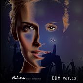 EDM Vol. 13 by Various Artists