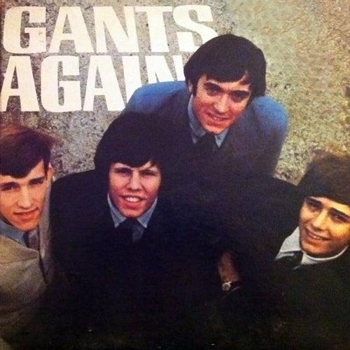 Gants Again by The Gants