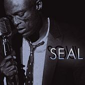 Soul by Seal