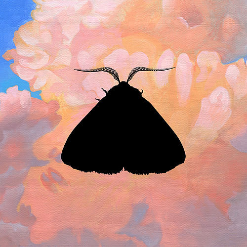 Moth to the Flame (Olga Bell Remix) by Chairlift