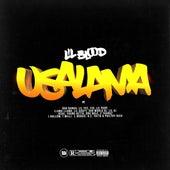 Usalama (feat. Boo Banga, Lil Yee, Yid, Lil Purp, Llama Llama, Lil Goofy, 3rd World DJ, Lil AJ, Joski, Young Getta, Dro Nole, 2 Thangz, J Hollow, T Milli, L Boogie, by Lil Blood