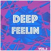 Deep Feelin, Vol. 2 - Selection of Deep House by Various Artists