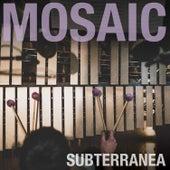 Subterranea by Mosaic