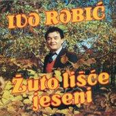 Žuto Lišće Jeseni by Ivo Robic