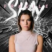 Fragile by Shay