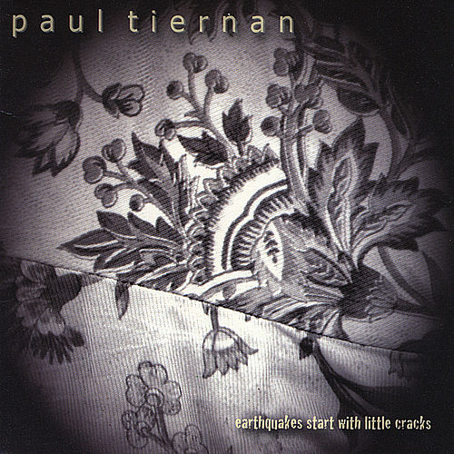 Earthquakes Start With Little Cracks by Paul Tiernan