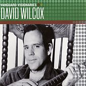 Vanguard Visionaries by David Wilcox