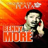 Orquídea de Plata by Beny More