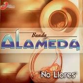No Llores by Banda Alameda