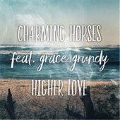 Higher Love (Acoustic Mix) von Charming Horses