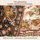 Telemann: Sonatas, Sonatinas And Fantasias by Various Artists