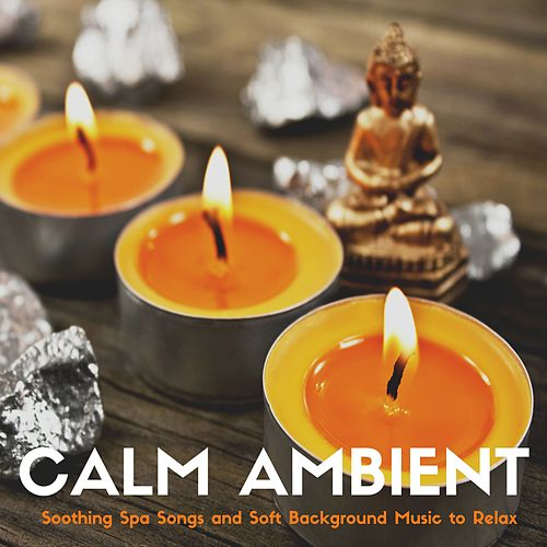 Calm Ambient - Soothing Spa Songs and Soft Background Music to Relax by Ambient Music Collective