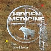 Hidden Medicine by John Two-Hawks