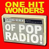 One Hit Wonders Of Pop Radio by Various Artists