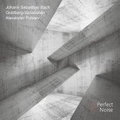 J. S. Bach: Goldberg Variations by Alexander Puliaev
