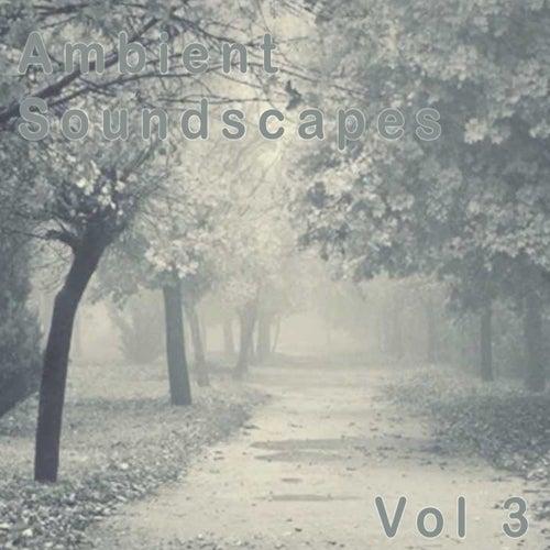 Ambient Soundscapes, Vol. 3 by Amanda Lee Falkenberg