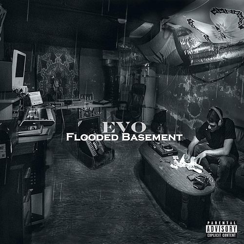Flooded Basement by Evo