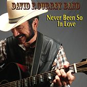 Never Been so in Love by David