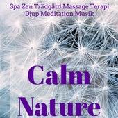 Calm Nature - Spa Zen Trädgård Massage Terapi Djup Meditation Musik med Natur Instrumental New Age Ljud by Various Artists