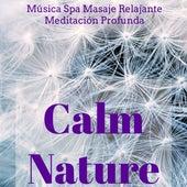 Calm Nature - Música Spa Masaje Relajante Meditación Profunda con Sonidos Naturales New Age Instrumentales by Various Artists