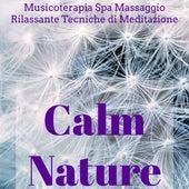 Calm Nature - Musicoterapia Spa Massaggio Rilassante Centro Benessere e Tecniche di Meditazione con Suoni della Natura New Age Strumentali by Various Artists