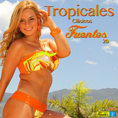 Tropicales Clásicos Fuentes 20 by Various Artists