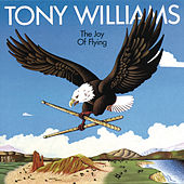 The Joy of Flying by Tony Williams