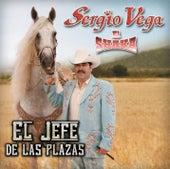 El Jefe De Las Plazas by Sergio Vega Y Sus Shakas Del Norte