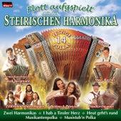Flott aufgspielt mit der Steirischen Harmonika by Various Artists