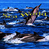Sea World by Ocean Sounds