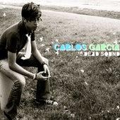 Dead Sound by Carlos Garcia