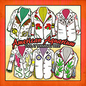 Northeast Texas Women Single by American Aquarium