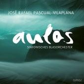 José Rafael Pascual-Vilaplana (Aulos 2012) by Various Artists